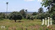 Kwale Freehold Plot 0.75 Acre   Land & Plots For Sale for sale in Kwale, Gombato Bongwe