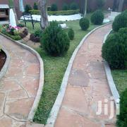 Excellent In Flowers Gardens And Landscaping | Landscaping & Gardening Services for sale in Nairobi, Karura