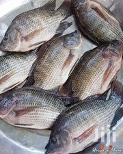 Fresh Fried Tilapia Fish | Meals & Drinks for sale in Mombasa, Bamburi